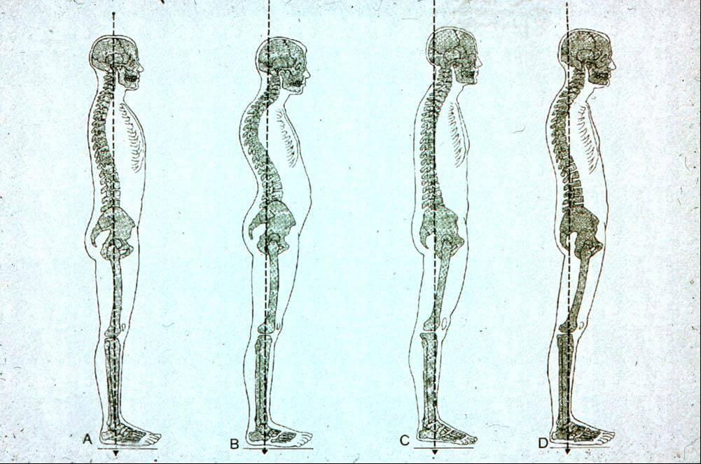 egészséges kismedence, specialista nőgyógyász, Kismedencei rehabilitáció, Inkontinencia, depresszió - Bioeedback kezelés, Budapest